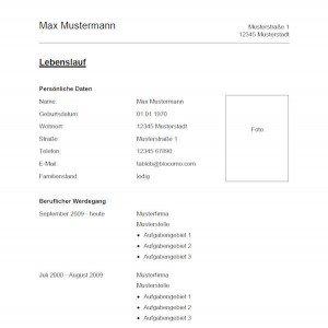 Vorlage / Muster: Vorlage 1