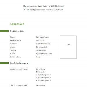Vorlage / Muster: Vorlage 12
