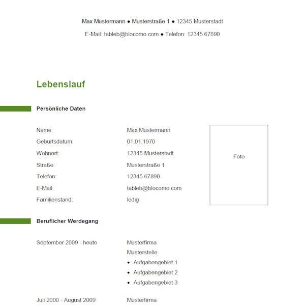 Lebenslauf-Vorlage 12 grün-weiß