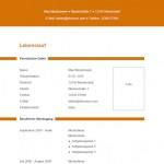 Lebenslauf-Vorlage 16 orange Linien