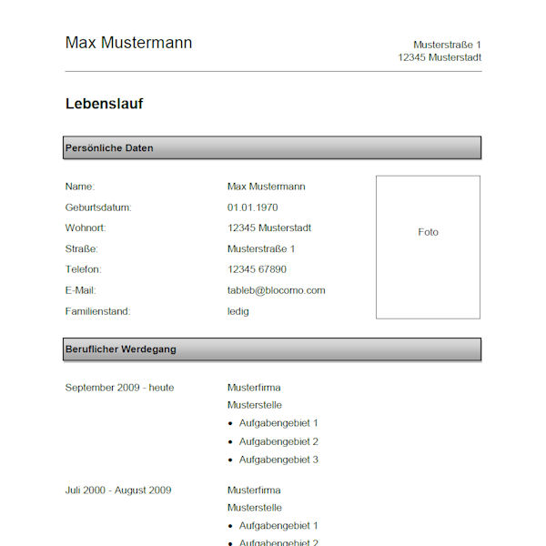 Vorlage / Muster: Vorlage 2