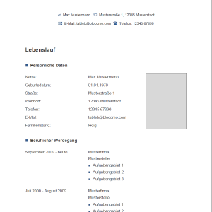 vorlage muster vorlage grau blau - Lebenslauf Word Download