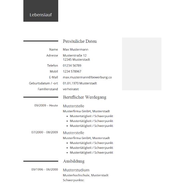 Tabellarischer Lebenslauf Aufbau Formate Vorlagen 10