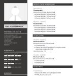 Vorlage / Muster: Lebenslauf-Layout Grau