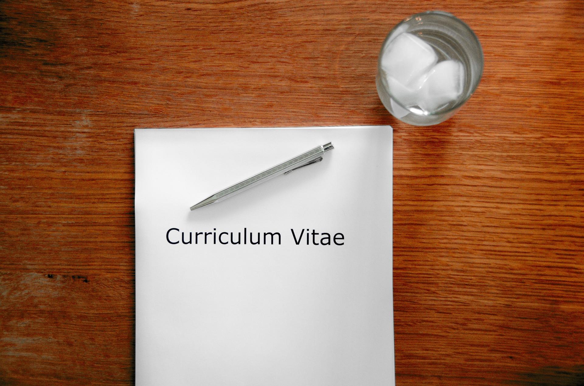 Form und Umfang des Curriculum Vitae