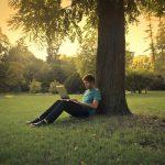 Vorlesungen finden beim Fernstudium digital statt