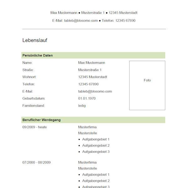 Vorlage / Muster: Vorlage 41