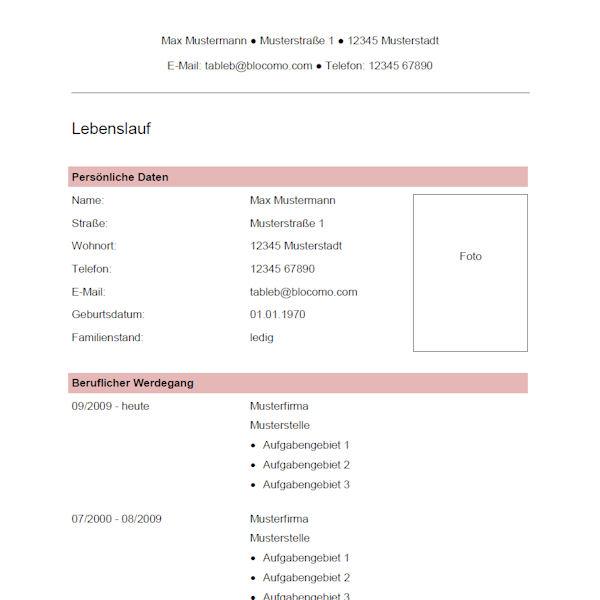 Vorlage / Muster: Vorlage 42
