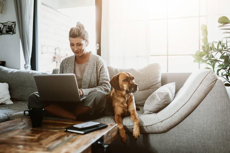 Eine Frau sitzt mit dem Laptop und dem Hund auf dem Sofa und arbeitet nach dem Work-Life-Blending